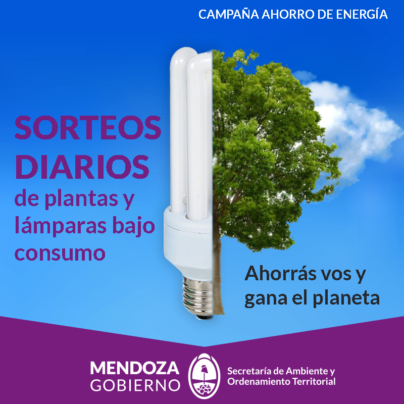 Campaña Ahorro Energia carusell