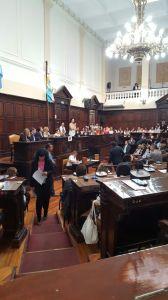 día de la mujer en la legislatura
