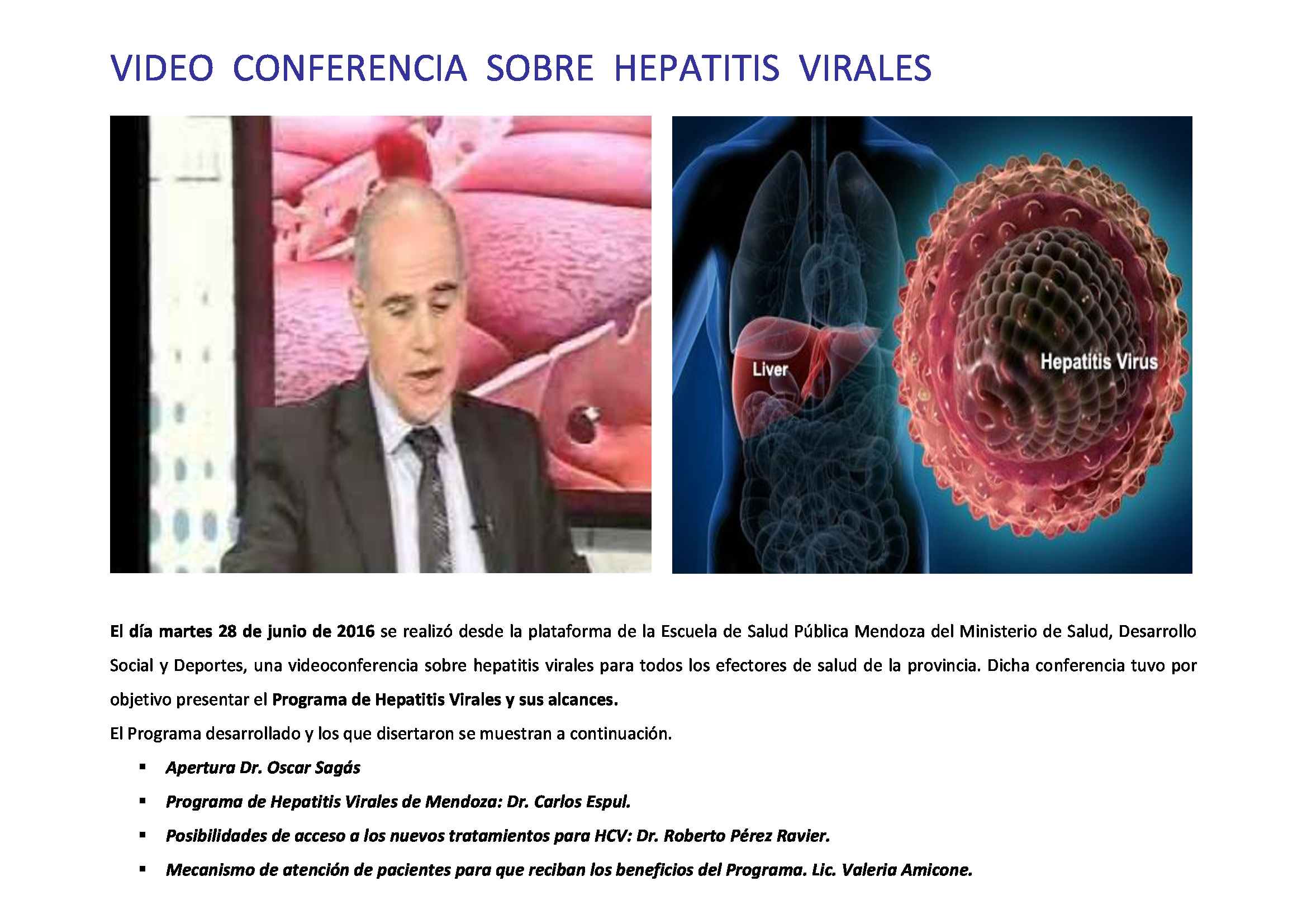 Video-conferencia-Hepatitis-Virales7_1
