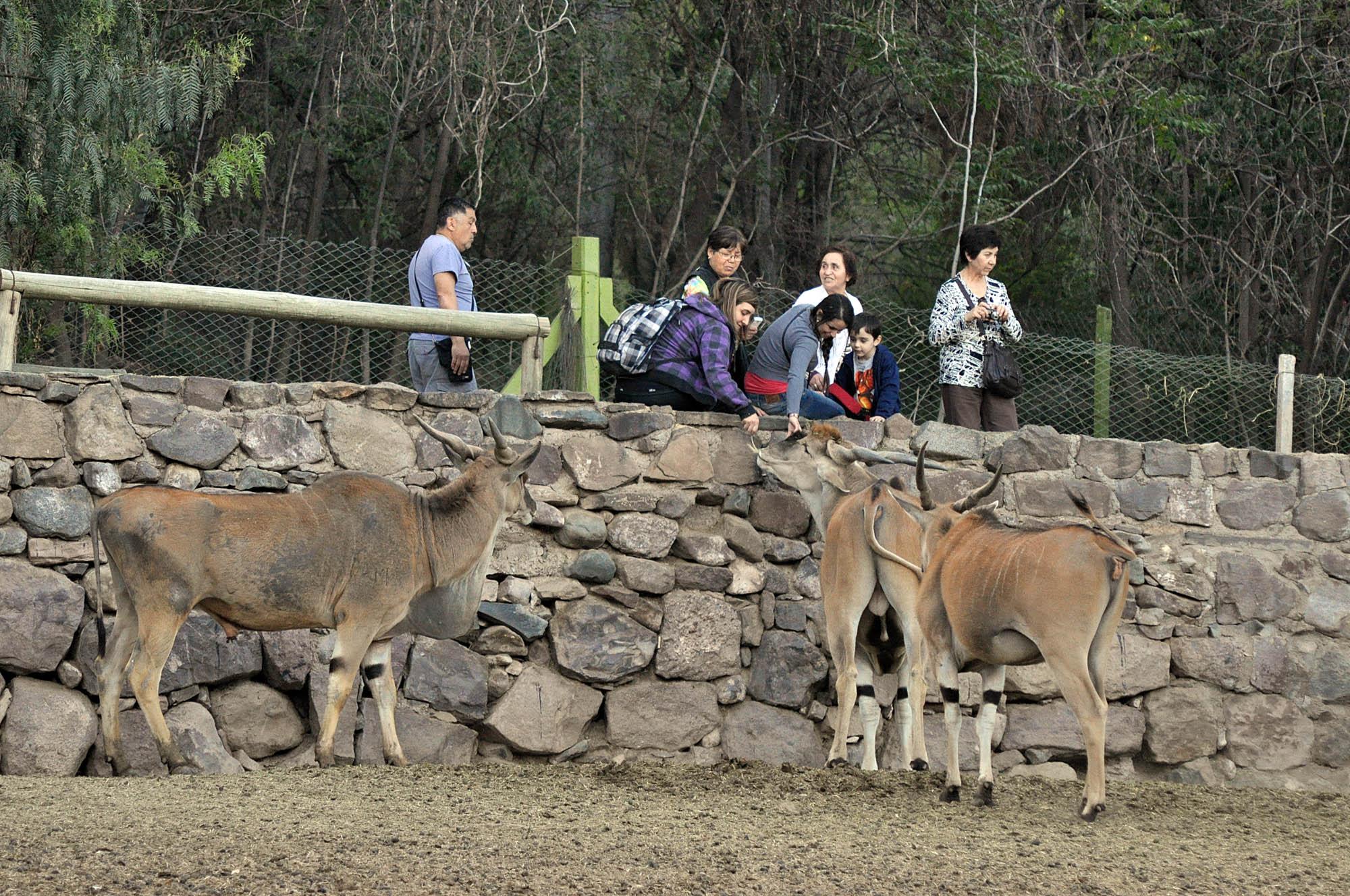 Fotos de animales en zoologicos 24