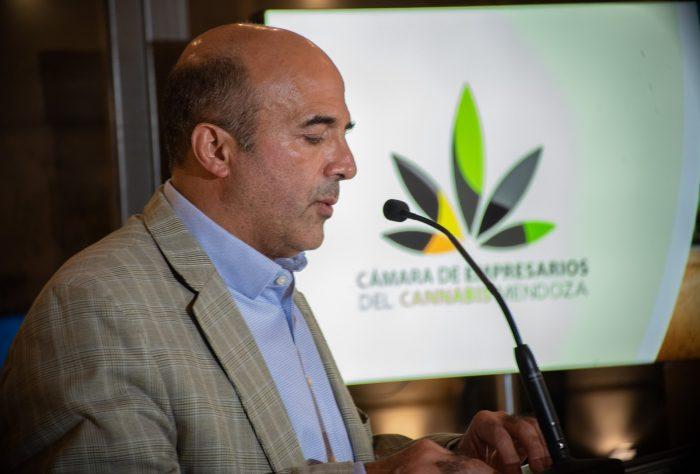 Cannabis medicinal: Mendoza tiene Cámara Empresaria